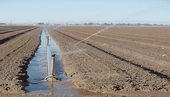 Arizona Agriculture and Water Cannot Live Without Each Other