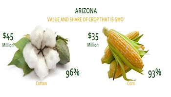 Biotech is Big Time in Arizona!