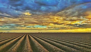 National Alliance Unveils Climate Policy Recommendations that Hopefully Produce Positive Results for Arizona and American Agriculture