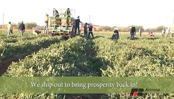 Video: The Ag products Arizona Ships Around the Globe