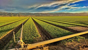 Arizona Agriculture Makes the Desert Green